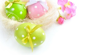 Picture flowers, eggs, spring, Easter