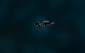 Picture background 1920x1200, football clubs, clubs, sport, Arsenal, gun, gun