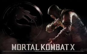 Picture Scorpio, Scorpion, Mortal Kombat X, Mortal Kombat 10