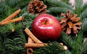 Picture branches, holiday, new year, Apple, spruce, fruit, cinnamon, needles, bumps, spices