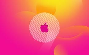 Wallpaper color, Hi-Tech, gradient, apple, logo, logo