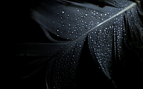 Picture drops, background, pen, black, minimalism
