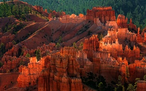 Picture forest, rocks, the evening, USA, national Park Bryce Canyon, the geological structure of the Hoodoos, …