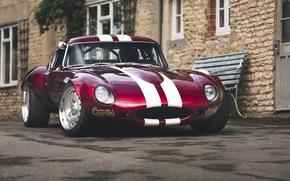 Picture Jaguar, jaguar, e-type