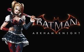 Picture Girl, Look, Bit, Harley Quinn, Harley Quinn, Warner Bros. Interactive Entertainment, Rocksteady Studios, Batman: Arkham ...
