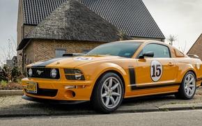 Picture Mustang, Ford, Saleen, 302, Jones, Parelli