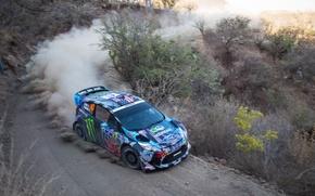 Picture Ford, Auto, Dust, Sport, Race, Mexico, WRC, Ken Block, Rally, Ken, Fiesta, Unit