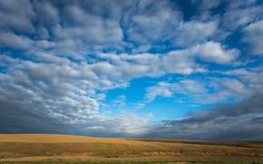 Picture field, clouds, blue, The sky, sky, field, blue, clouds