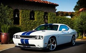 Wallpaper Dodge, SRT8, Challenger, Dodge, 2011, Challenger