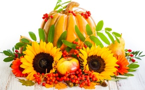 Picture autumn, leaves, sunflowers, berries, apples, harvest, pumpkin, fruit, pear, autumn, pumpkin, sunflower, harvest