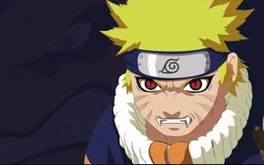 Picture game, Naruto, anime, red eyes, boy, fang, ninja, hero, asian, manga, shinobi, kyuubi, japanese, Uzumaki …