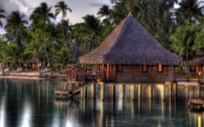 Picture sea, tropics, palm trees, shore, the evening, Bungalow