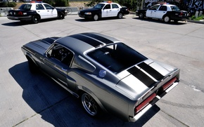 Picture Mustang, Ford, GT500, police, Ford, Mustang, Eleanor, rear view, Muscle car, Muscle car, Eleanor