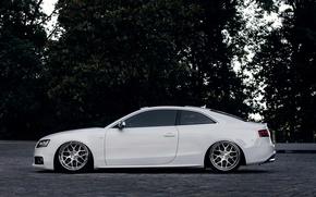 Picture Audi, Audi, profile, white, white