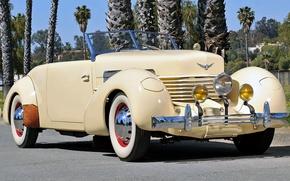Picture nature, retro, Palma, lights, grille, convertible