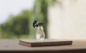 Picture berries, background, branch, blur, book, vase