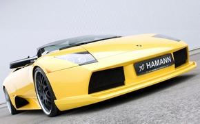 Picture yellow, Roadster, Lamborghini, Hamann, supercar, front view, tuning, Murcielago