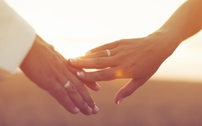 Picture girl, the sun, background, Wallpaper, mood, tenderness, hands, ring, day, touch, wallpaper, girl, love, guy, …