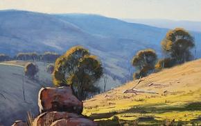 Picture trees, branches, nature, stones, hills, art, dry, Australia, artsaus