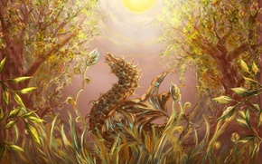 Picture grass, the sun, light, trees, dragon, Forest