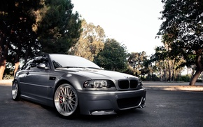 Picture grey, BMW