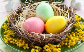Wallpaper table, holiday, eggs, spring, plate, Easter, socket, Easter, Easter