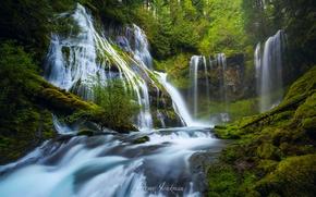Picture river, USA, waterfalls, Washington, Wind, Panther Creek Falls, District Of Skamania