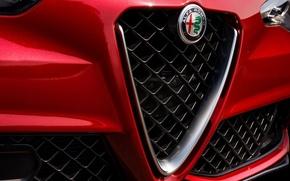 Picture Logo, Alfa Romeo, Alfa Romeo, The front