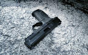 Picture gun, weapons, Springfield, semi-automatic