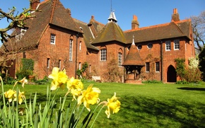 Picture grass, the city, lawn, England, mansion, daffodils, Bexleyheath