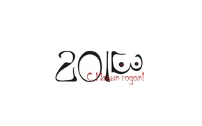 Picture BACKGROUND, WHITE, YEAR, 2013, DATE, NEW YEAR, WOMEN's, CHEST ;)