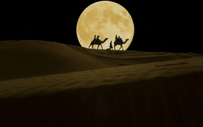 Picture night, the moon, desert, camels