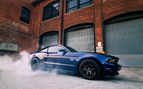 Picture blue, Mustang, Ford, Mustang, muscle car, Ford, blue, muscle car, 5.0