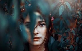 Picture leaves, portrait, mole, Ronny Garcia