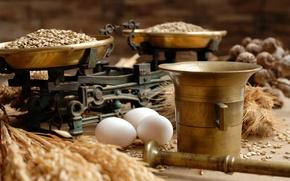 Wallpaper food, eggs, grain, Libra