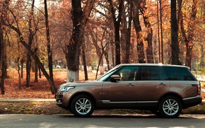 Picture machine, autumn, range rover, bronze