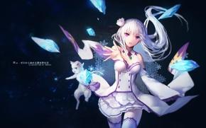 Picture cat, girl, spirit, anime, art, Emilia, Puck, Re: Zero kara hajime chip isek or Seikatsu