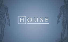 Picture House, House, M.D., TV series