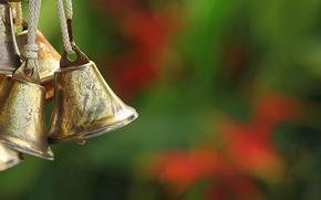 Picture macro, background, bells