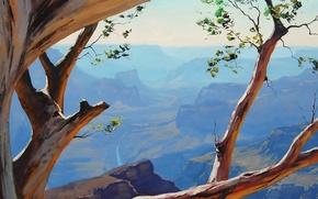 Wallpaper trees, branches, nature, rocks, art, canyon, crooked, artsaus