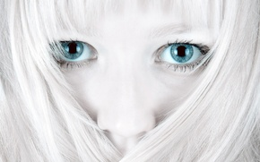 Picture white, eyes, hair, 155