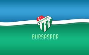 Picture wallpaper, sport, logo, football, Bursaspor