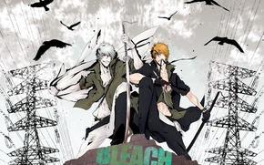 Picture guy, swords, bleach, anime, Kurosaki Ichigo, art, empty