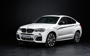 Picture BMW, xDrive, 2014, F26, Performance Accessories, 28i