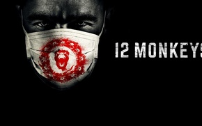 Picture blood, monkey, man, series, monkeys, death, mask, pandemic, apocalypse, devastation, tv series, time travel, tv ...