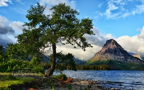 Picture landscape, mountains, lake, tree