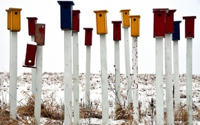 Picture snow, colored, stick, birdhouses