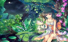 Picture night, nature, stream, the moon, stars, anime, art, girl, Lily of the valley, cage flowers