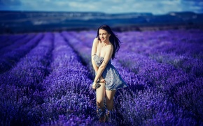 Picture flowers, girl, field, Katrina Blue, legs, lavender, neckline