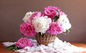 Wallpaper basket, colorful, peonies